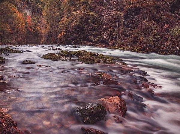 Photo d'une rivière en automne
