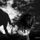 Interview d'une jeune et talentueuse photographe varoise
