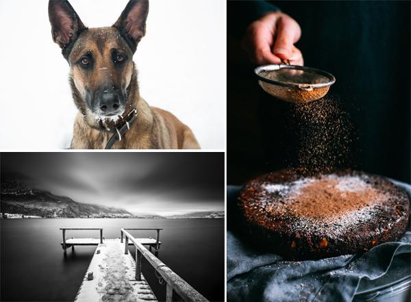 les différentes disciplines photographiques